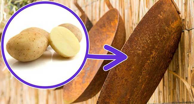 tẩy vết rỉ sét trên kim loại bằng khoai tây